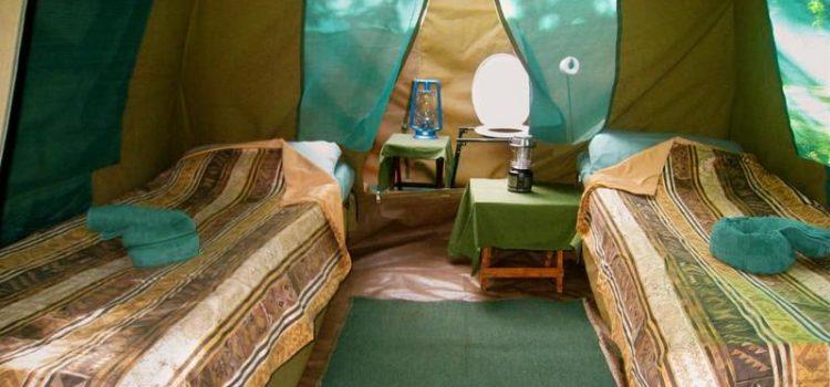 Fully Serviced – Nxai Pan Camp